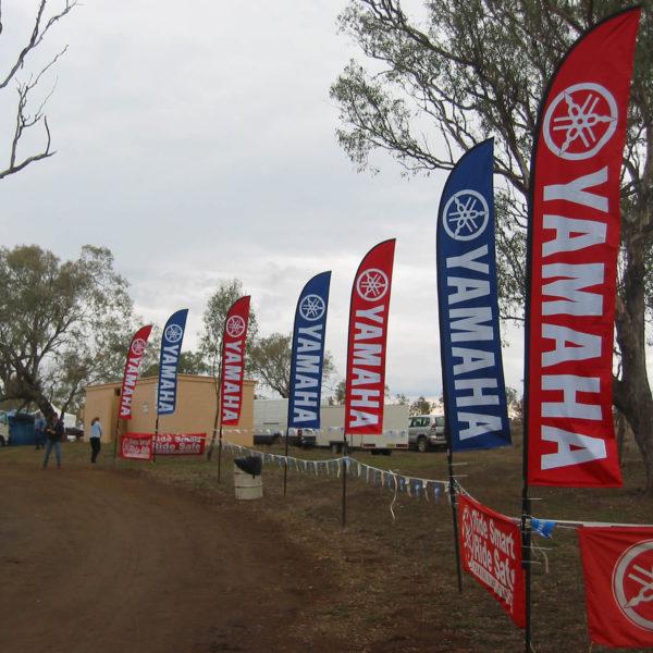 Sharkfin Banner